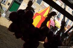 P1130318 (fdpdesign) Tags: finalborgo italia liguria lumix lx3 lumixlx3 panasonic medioevale festa sagra manifestazione estate 2018 soldati guerrieri rapaci bandiere borghi paesini summer italy tradizioni fodd streetfood rievocazione battaglia