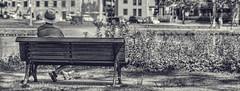 Contemplation (Gilles Meunier photo) Tags: terrebonne contemplation man bench banc parc