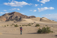 Looking Forward to the Fall (Dancing.With.Wolves) Tags: dunes desert sand blowing weather clouds hiker wife women strong blue landscape parks travel fall 2018 sony bush nature walking mountains