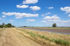 River Nene - Foul Anchor, Cambridgeshire, UK (Nature21290) Tags: cambridgeshire foulanchor july2018 rivernene saltmarsh uk