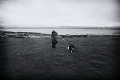 Walking The Dog (RadarO´Reilly) Tags: reykjavik iceland island strand beach regen rain hund dog people street streetphotography
