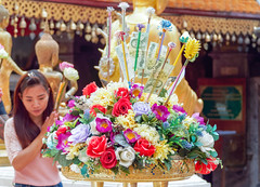Offrandes...Wat Phrathat Doi Suthep .. Chiang Mai (geolis06) Tags: geolis06 asia asie thaïlande olympus chiangmai doisuthep watphrathatdoisuthep bouddhisme bouddha buddhism religion pilgrim pélerin prière prayer statue
