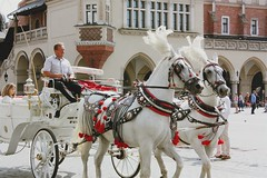 Horse drawn carriage (Gondolin Girl) Tags: krakow poland europe travel city holiday holidays break citybreak architecture church horses horse carriage horsedrawncarriage
