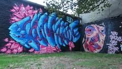 Solid / Denderlaan - 3 sep 2018 (Ferdinand 'Ferre' Feys) Tags: gent ghent gand belgium belgique belgië streetart artdelarue graffitiart graffiti graff urbanart urbanarte arteurbano ferdinandfeys
