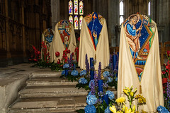 WinchesterFF2018-3381 (Parapan) Tags: canoneos7dmkii winchester cathedral flowers