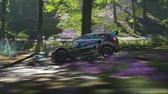 2017 Ford #14 BFGoodrich Fiesta ST GRC (nikitin92) Tags: game screenshots vidoegame car racing road rally ford14bfgoodrichfiestastgrc ford bfgoodrich fiesta st grc forzahorizon4 pc 4k sportscar