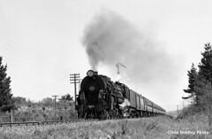MSL440 (Kiwi yzxy) Tags: newzealandrailways nzr simt railroad railway trains southislandmaintrunk msl
