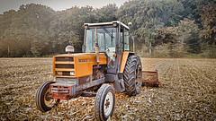 maïs 891 2018 (sebastien.demotier) Tags: vieux tracteur old tractor renault 891s maïs broyeur tree campgne field