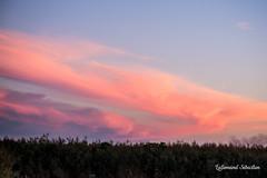 Tableaux nuageux