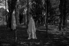 My Lovely Ghosts (veronika b phoenix) Tags: ghost conceptual surreal surrealism surrealismo nikon fantasma oscuro dark woods forest bosque landscape bw negro sábana bedsheet white clothing blanco terror horror dress figure
