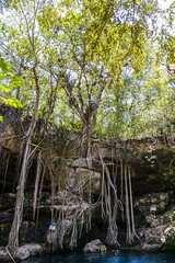 Cenote Xbatun (andréscórdova) Tags: cenote yucatan yucatán méxico mexico nature naturaleza explore agua selva jungle maya mayan
