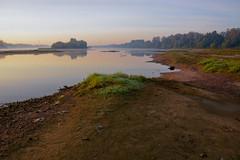 20180918-DSC_7752 (Dariusz Węcławek) Tags: river rzeka landscape poland natura nature wisła vistula dzika wild rezerwat przyroda