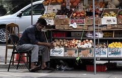 A very patient fruit vendor in the city. (dtravano) Tags: 50mmlens nikond3000 streetphotography photooftheday lightsandshadows colorsandtones nyc newyorkers urbanstyle streetscene citylife fruitvendorstall