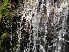 Woda Water Waser (arjuna_zbycho) Tags: badenbeiwien kurstadt luftkurort austria stadt city miasto thermenregion biosphaerenpark niederösterreich österreich rakousko wienerwald doblhoffpark rosengarten flussschwechat rzekaschwechat