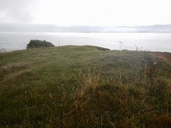 Sully Island p (Dugswell2) Tags: sullyisland p21 tidalisland wales siblet caton