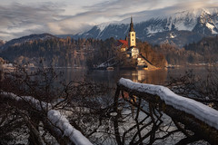 SPRINGTIME LIGHTS (Stephen Hunt61) Tags: landscape landscapes landmark lake lago lakescapes dawn sunrise hills church island water reflections trees trunks snow mountains clouds romantic bled slovenja stefanocaccia