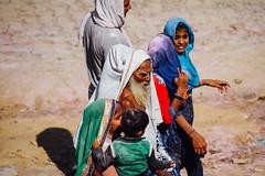 Sadhu and Women Pilgrims, Vrindavan India (AdamCohn) Tags: abeer adamcohn hindu india vrindavan gulal holi pilgrim pilgrimage pilgrims अबीर गुलाल होली