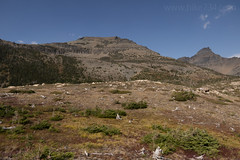 Red Crow Mountain from Firebrand Pass (hike734) Tags: