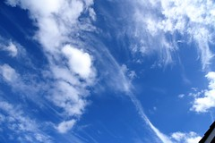 DSC_1601 (PeaTJay) Tags: nikond750 reading lowerearley berkshire gardens outdoors nature blue sky clouds
