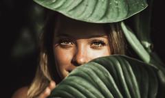 Isabela (Tom Amorim) Tags: singapura nature natureza jungle