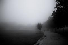 the scent of autumn (StefanSpeidel) Tags: bavaria germany neufahrn stefanspeidel