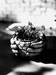Carry me ! (r.kootval) Tags: handcraft hand flickr space black contrast mobilegraphy blackandwhite shadow blackpoint bw bnw plant cafe tehran iran