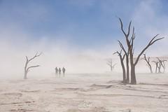 Sandsturm im Tal/ Sandstorm in the valley (LENS.ART Photographie) Tags: wüste deadvlei namib desert sandsturm sandstorm schutz shelter landschaft landscape afrika nikon d7200 sand wind personen sky trees namibia sossusvlei hell