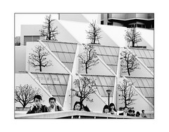 Tokyo Bonsai Garden (Armin Fuchs) Tags: arminfuchs tokyo japan trees geometric building shinjuku