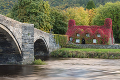 'Autumn in Llanrwst' (benstaceyphotography) Tags: betwsycoed cymru fall virginiacreeper riverconwy autumn river water wales bridge tearoom tuhwnti'rbont northwales