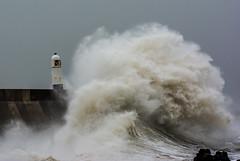JWL8870  Storm Ali.. (jefflack Wildlife&Nature) Tags: storm lighthouse stormali seal porthcawl seashore coastline coast coastal harbours seascape nature