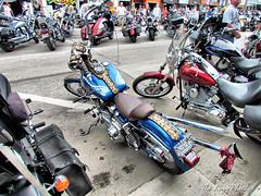 Aug 2011 - Around Sturgis during the rally v24 (La_Z_Photog) Tags: lazy photog elliott photography worland wyoming sturgis south dakota black hills motorcycle rally classic races lazelle main street babes beer bikes