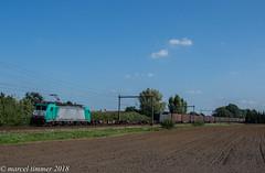 Lineas 2831, Teuge (cellique) Tags: lineas 2831 186223 teuge containertrein cargo goederentrein spoorwegen treinen eisenbahn zuge railway train
