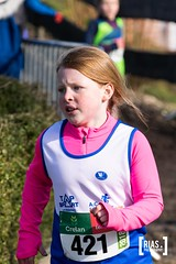 """2018_Nationale_veldloop_Rias.Photography15 • <a style=""""font-size:0.8em;"""" href=""""http://www.flickr.com/photos/164301253@N02/44810375062/"""" target=""""_blank"""">View on Flickr</a>"""