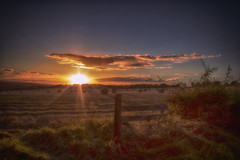 Harvest (xDigital-Dreamsx) Tags: rural countryside field fence sunlight sun sunset sundown sunshine dusk clouds landscape hedge
