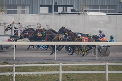 Century Downs 2018 (tallhuskymike) Tags: centurydowns racing horse horses harnessracing alberta action event race racetrack 2018 balzac