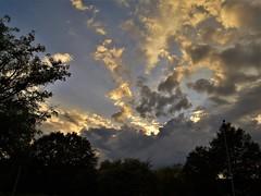 Dopo tanto sole, ora è il momento delle pioggie? (Tiziana Io) Tags: nwn nuvole tuttonuvole nuvoleecielo clouds alberiecielo
