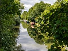Canal (gissberg) Tags: miltonkeynes england unitedkingdom gb sonya7iii ilce7m3 fe2470f28gm sony canal