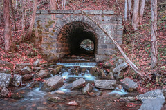 Tunnel Culvert #1 (tclaud2002) Tags: culvert tunnel water stream mountain mountainstream rocks trees mothernature fall fallcolors waterfall outdoors topton northcarolina usa landscape nature