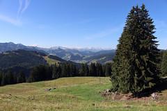 Blick zu den Zentralalpen (uwelino) Tags: switzerland schweiz swiss suisse swisstravel swisstravelspectacular kanton schwyz 2018 europa europe alpen alps