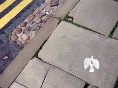 Squish! (the justified sinner) Tags: justifiedsinner paper dove sticker graffiti lichfield staffordshire midlands panasonic 17 20mm gx7