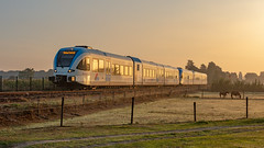 Wehl BRENG 5048-5045 stoptrein 30724 Arnhem Centraal (Rob Dammers) Tags: wehl gelderland nederland nl breng stadler gtw diesel