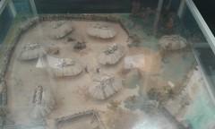 Musée archéologique de Caissargues (30) (SMartine ♫♫) Tags: martinesodagui martinesodaigui caissargues gard occitanie 30