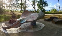 """ Raya"" Mission Beach Mosaic Queensland (jimnicholls65) Tags: mosaic stingray missionbeach raya"