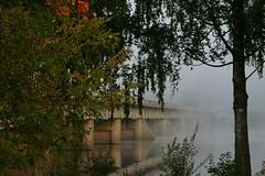 foggy morning 3 (EllaH52) Tags: water river bridge fog tree trees reflections autumn