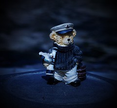 Uno strano lupo di mare 😲😄 (ornella sartore) Tags: orsetto oggettistica colori particolari allaperto