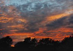 Heavens Ablaze (brucecarlson66) Tags: sunset sun set color orange yellow gray grey blue cloud sky oak tree silhouette rain austin texas dripping springs glory glorious sundown nightfall dusk twilight eve evening light show central hill country fiery blaze ablaze heaven nature paint painting heavens