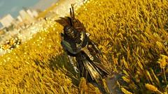 """Morning walk."" (Xenolith3D) Tags: assassinscreedorigins game screenshot photomode virtualphotography portrait portraitphotography bayek medjay 4k societyofvirtualphotographers egypt afterlife ancientegypt hd anvil ubisoft"