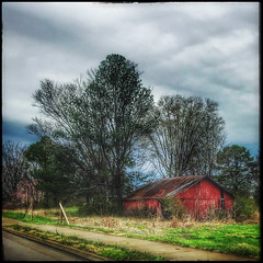 DMT_Murfreesboro_Barn (Felicia Foto) Tags: barn agriculturalbuilding building grass field sky clouds cloudy snapseed iphone trees murfreesboro murfreesborotennessee rutherfordcountytennessee middletennessee tennessee allrightsreserved denisetschida road sidewalk architecture red green yellow blue iphone7plus ruraldecay