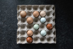 Sunday (Helena Johansson 71) Tags: sunday söndag fs180916 fotosondag egg eggs food foodphotography fotoarte nikond5500 d5500 nikon