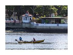 Urban Fishes (W Gaspar) Tags: recife pernambuco river urban northeast brazil brasil southamerica latinamerica canoe fishermen nikon nikkor v1 30110mm travel water